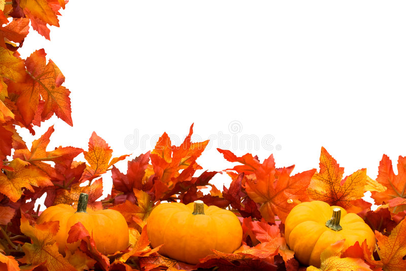 Fall Harvest Border stock photography