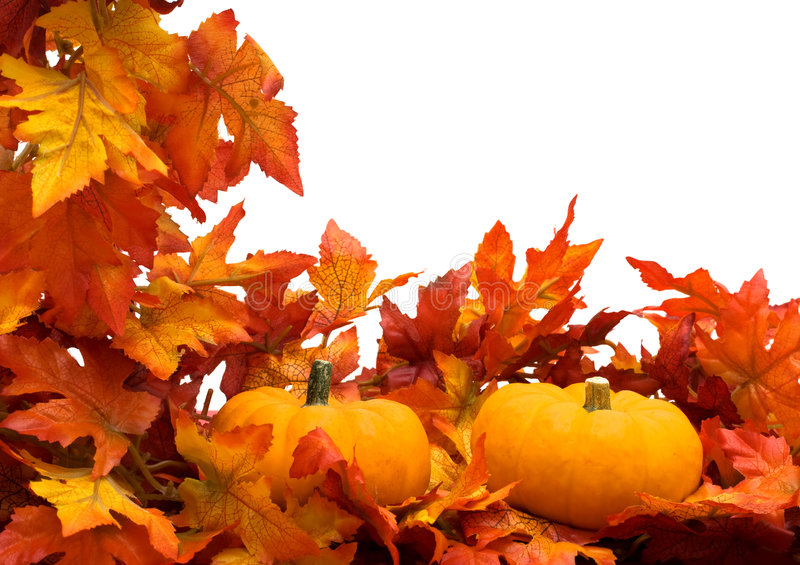 Download Fall Harvest Border Royalty Free Stock Photo - Image: 6476025