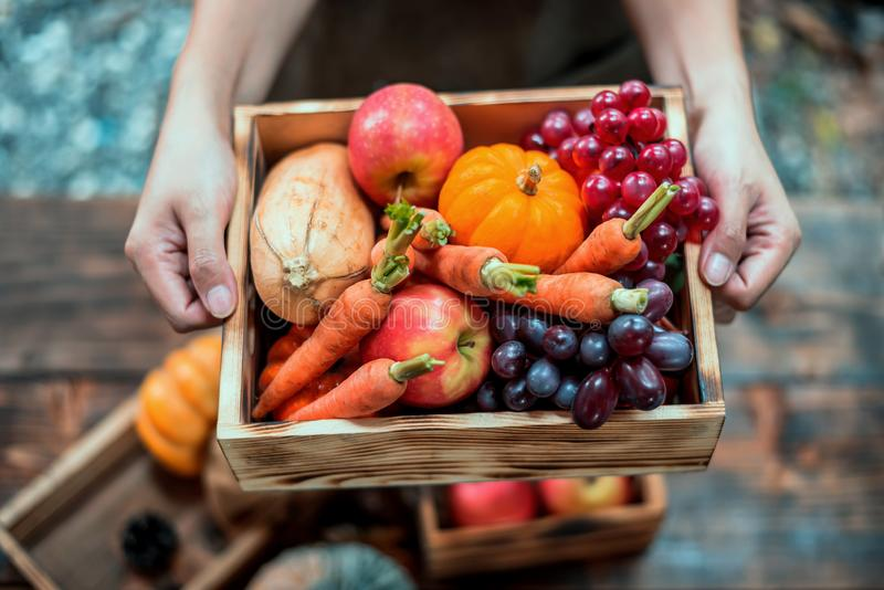 Fall harvest cornucopia. Autumn season with fruit and vegetable. stock photography