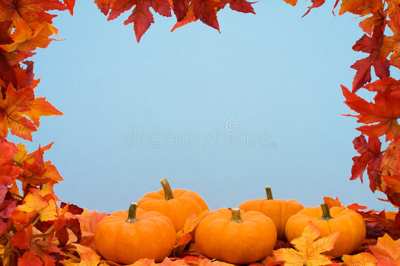 Fall Harvest Frame royalty free stock photos