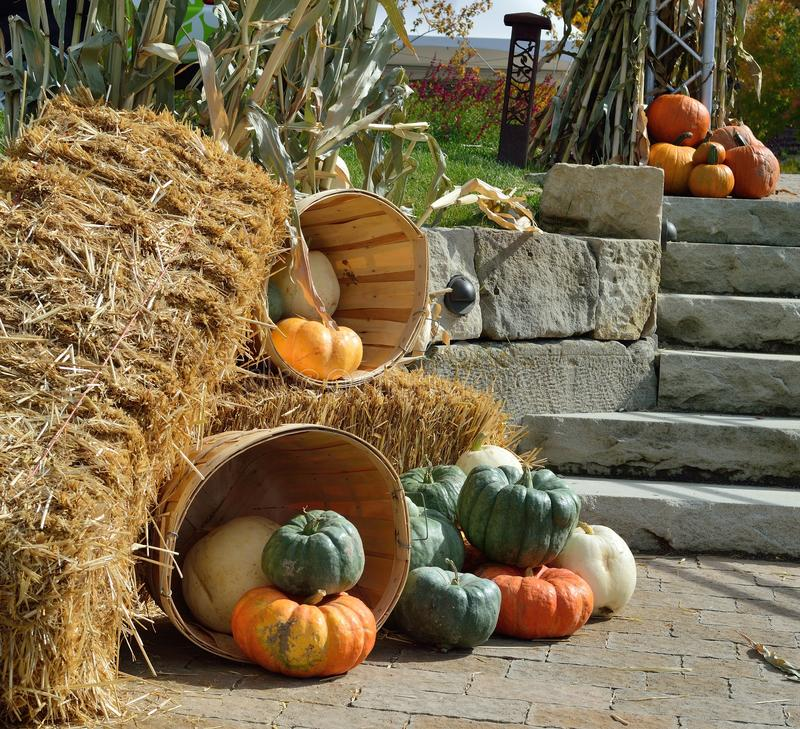 fall harvest decorations outdoors fall harvest outdoor decorations stock image image of corn  fall harvest outdoor decorations stock
