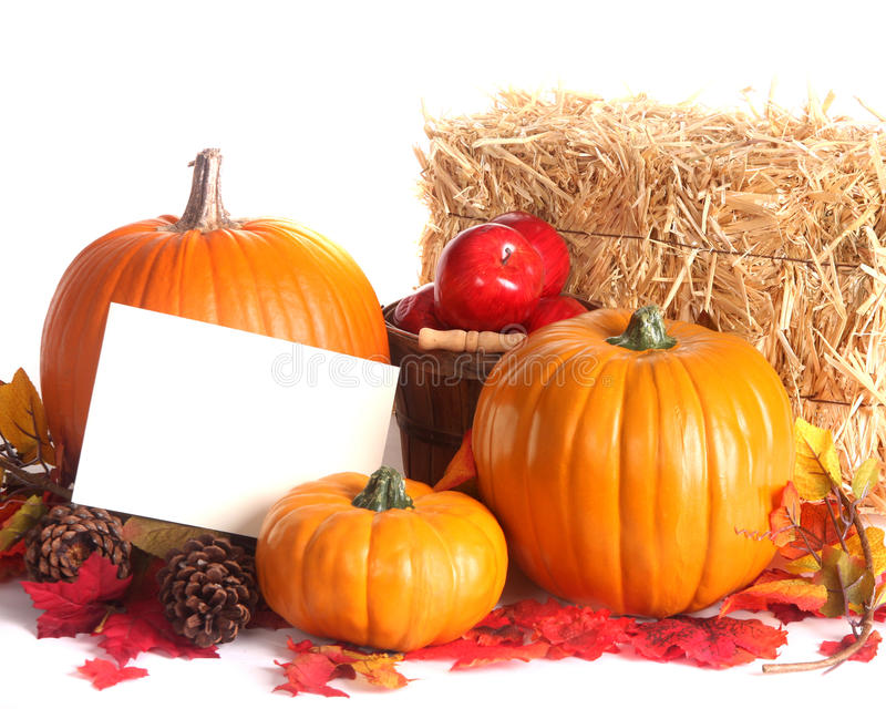 Fall harvest scene isolated on white royalty free stock photography