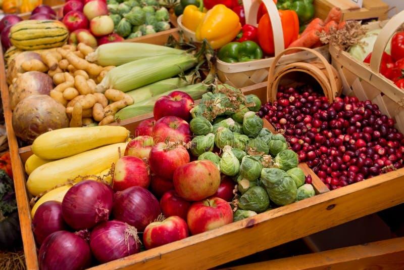 Fall harvest vegetables royalty free stock photos