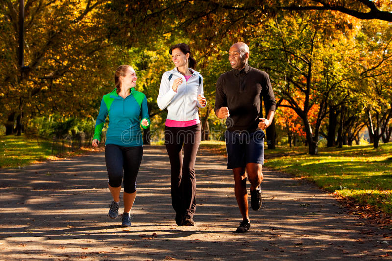 Fall Jog Park. Three people jogging in the park on a beautiful fall day royalty free stock photo