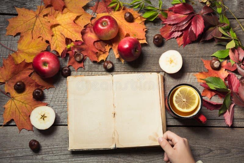 Fall-Konzept Weinlesealbum in der Hand mit Raum für Text und Tasse Tee, Dekor des Herbstlaubs, Äpfel auf hölzernem Brett stockfotos