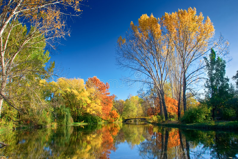 Fall landscape royalty free stock image
