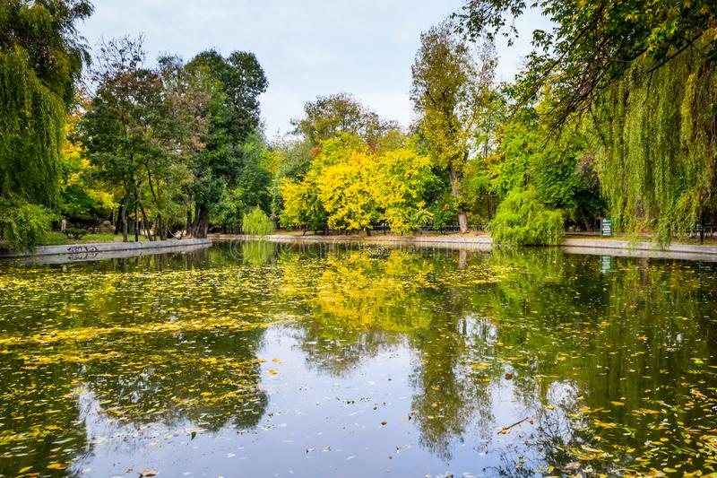 Fall Landscape. In Cismigiu Park, Bucharest, Romania royalty free stock images