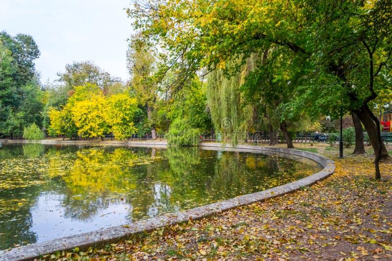 Fall Landscape. In Cismigiu Park, Bucharest, Romania stock photos