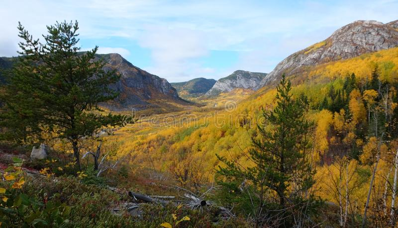 Fall landscapes, Canada royalty free stock photo