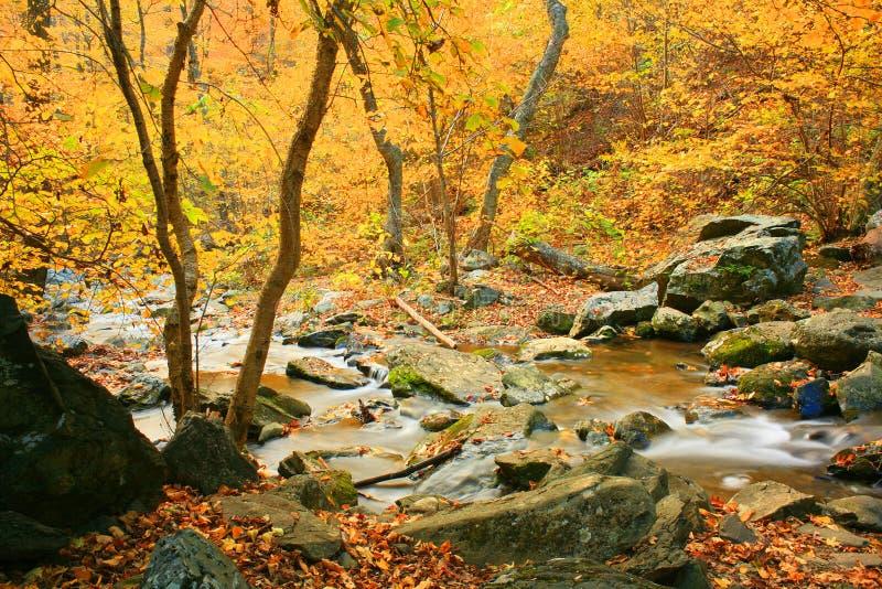 Fall-Landschaft lizenzfreies stockbild
