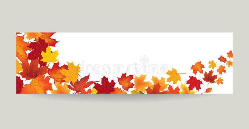 Fall leaf nature banner. Autumn leaves background. Season floral. Horizontal wallpaper vector illustration