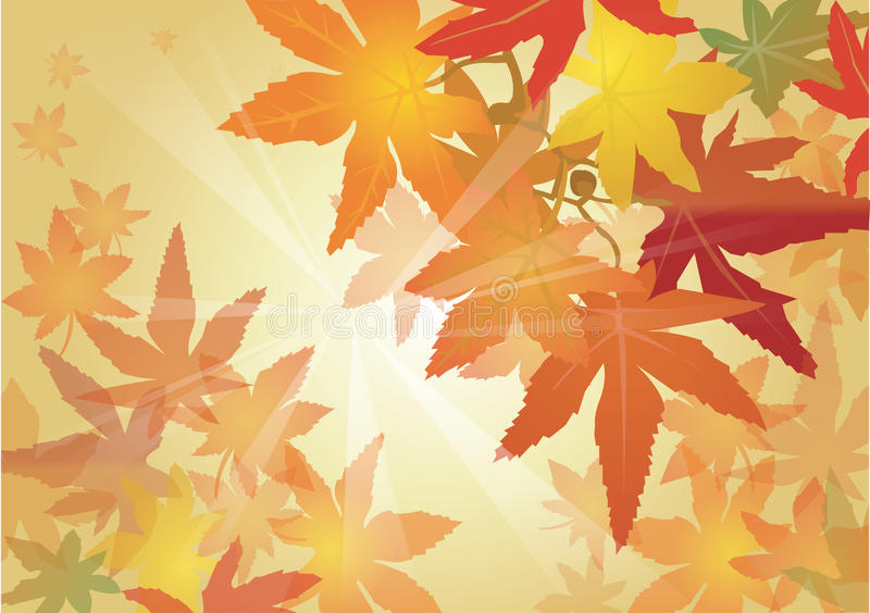 Download Fall leave stock vector. Image of branch, dead, light - 12497210
