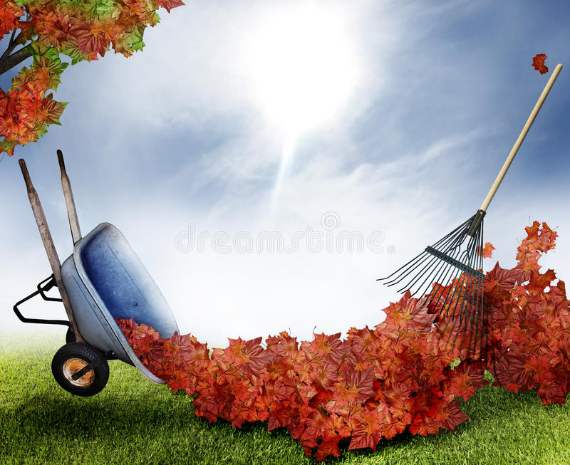Download Fall leaves stock image. Image of wheelbarrow, leaves - 16846531