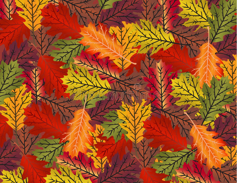 Fall Leaves. Of various colors scattered on a background stock illustration