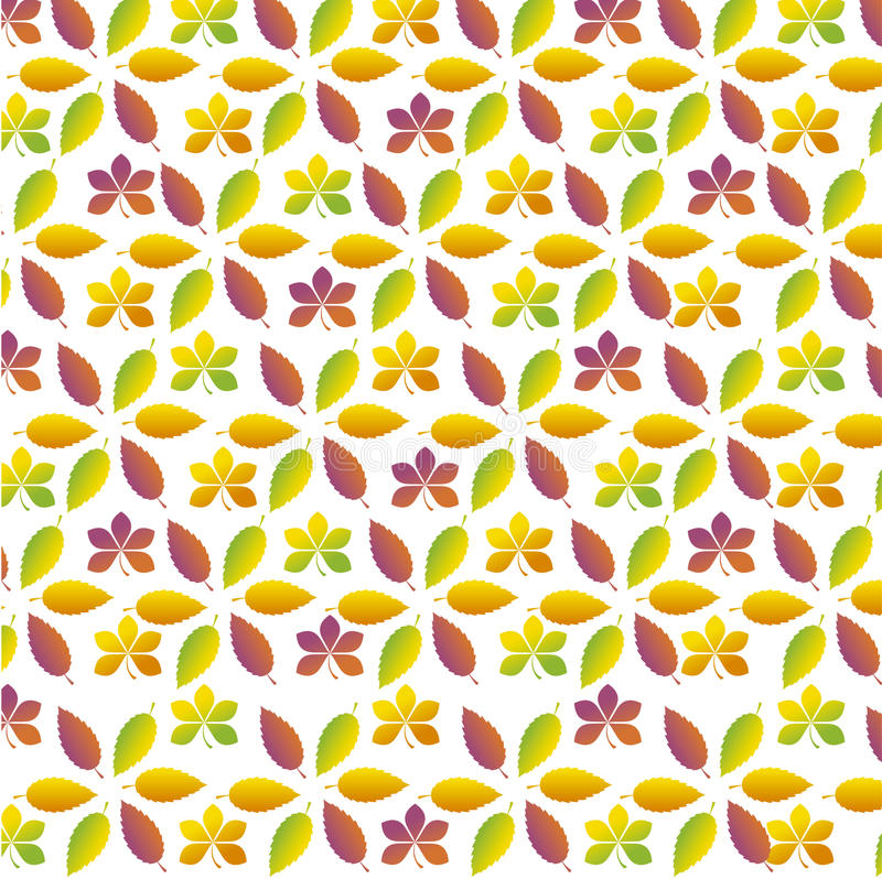 Fall leaves. Vector illustration pattern of fall leaves vector illustration