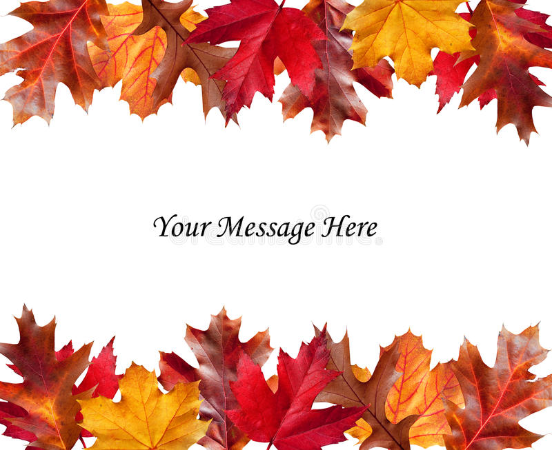 Download Fall Leaves Above And Below A Message Stock Photo - Image of fall, brown: 28424208