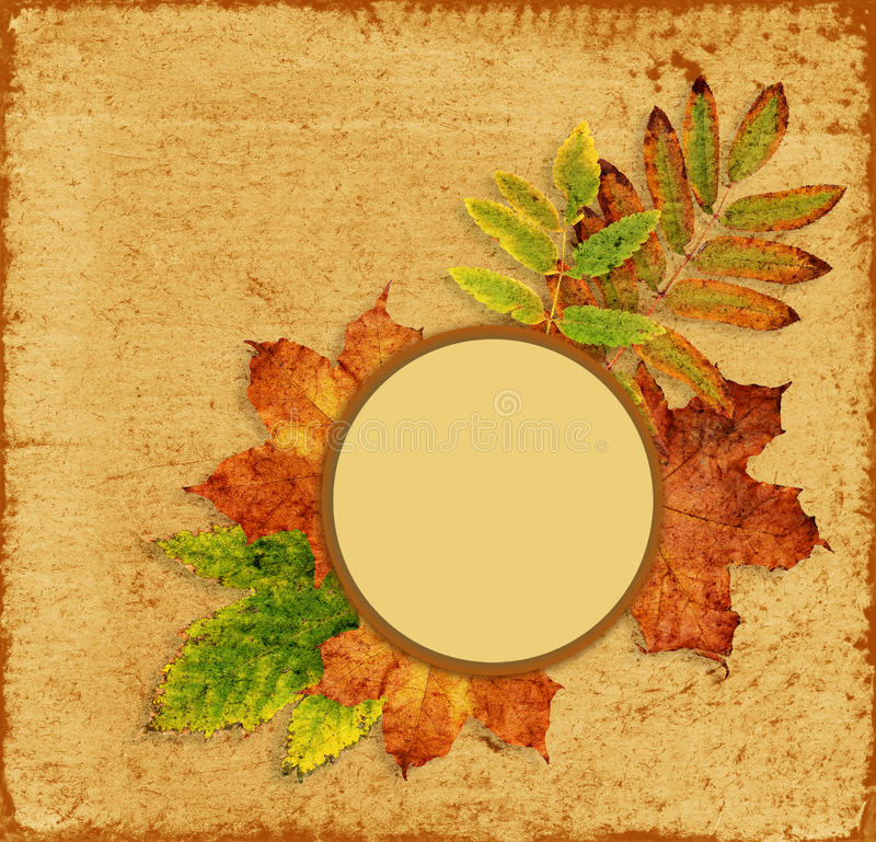 Fall leaves background. Fall leaves frame on brown background vector illustration