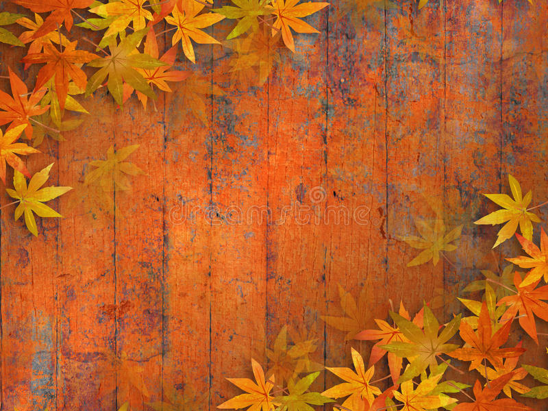 Fall leaves background. Grunge autumn design with fall leaves against orange red wooden planks vector illustration