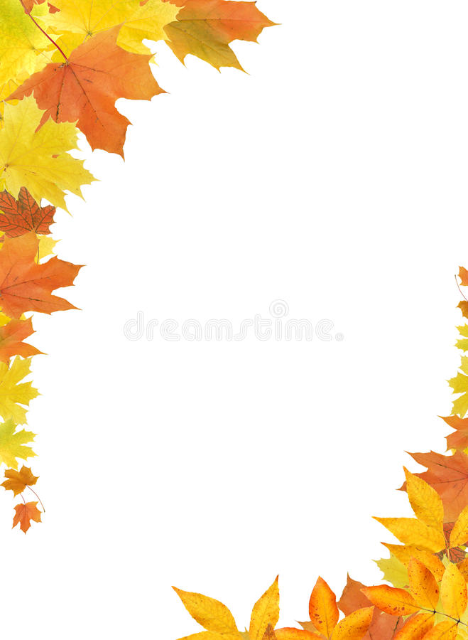 Fall Leaves Border stock photography