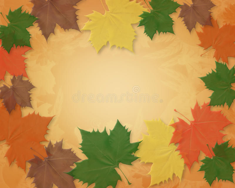 Fall leaves Border. Illustration composition of colorful fall leaves design for invitation, border or Thanksgiving greeting card background with copy space vector illustration