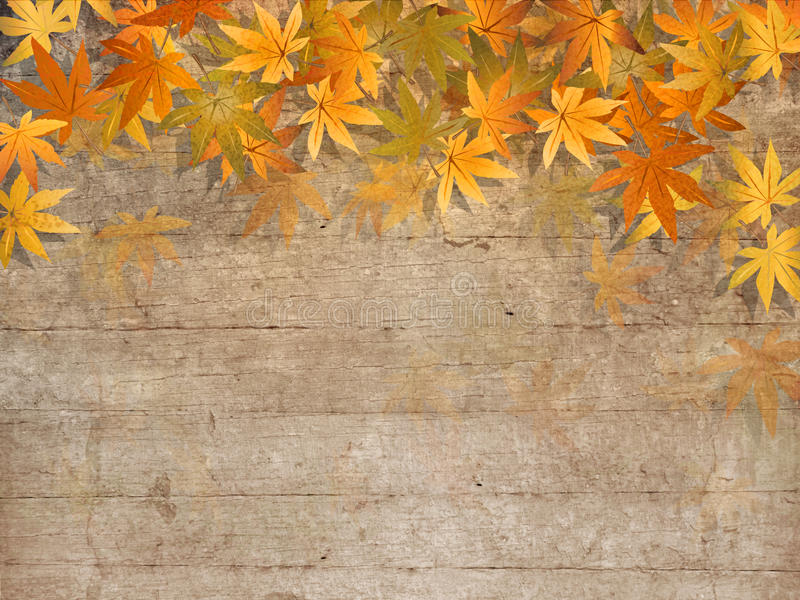Fall leaves border - autumn design. Autumn background with colorful fall leaves against old wooden planks - grunge style vector illustration