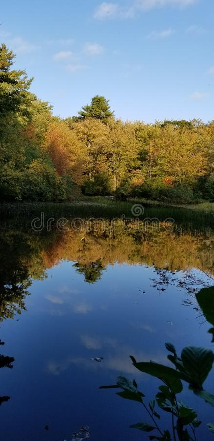 Fall leaves colors reflections pond sunset. Water royalty free stock photography