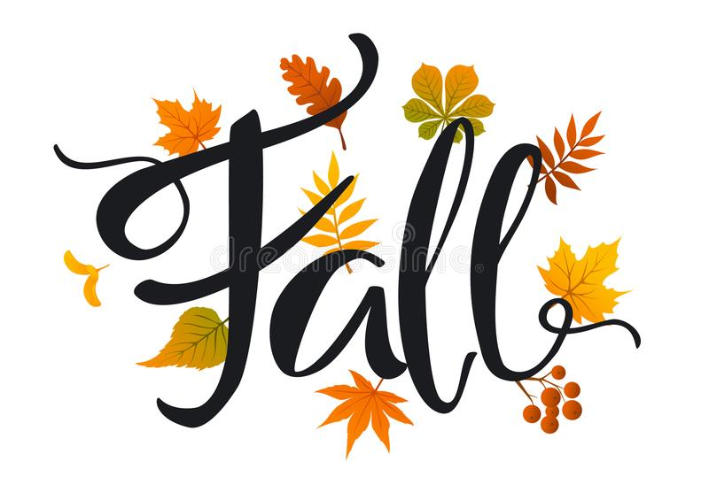 Fall leaves foliage background. Fall leaves foliage handwritten background vector illustration