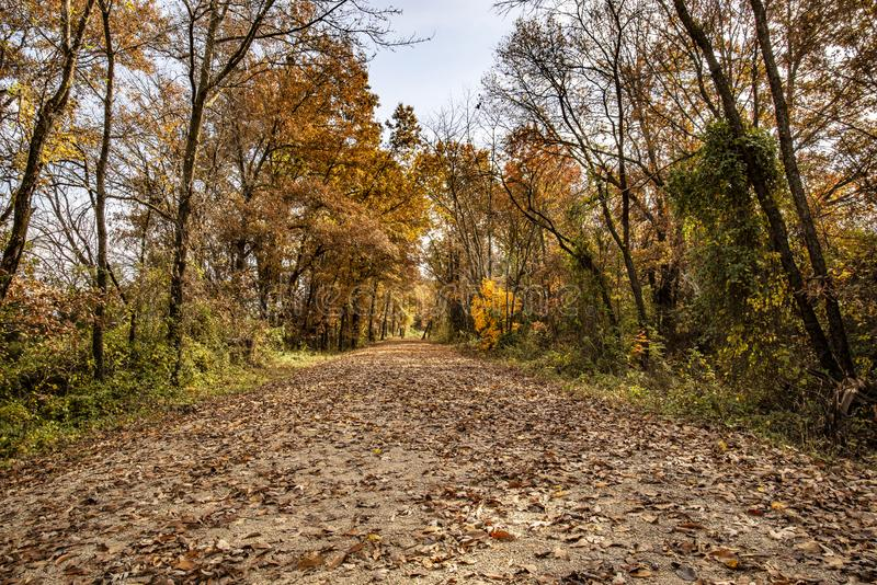Fall leaves on the old Rock Island railroad trail royalty free stock photos