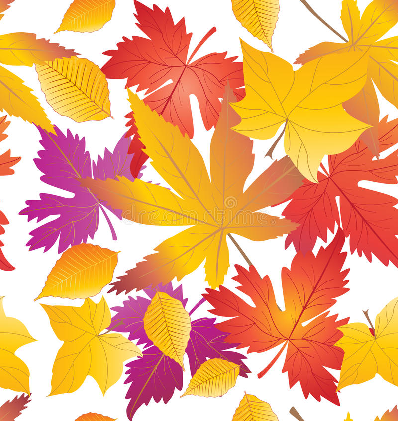 Fall leaves pattern. Fall maple leaves seamless pattern. Autumn leafs border. Maple leaves Autumn background. Fall wallpaper. Holiday background. Digital royalty free illustration