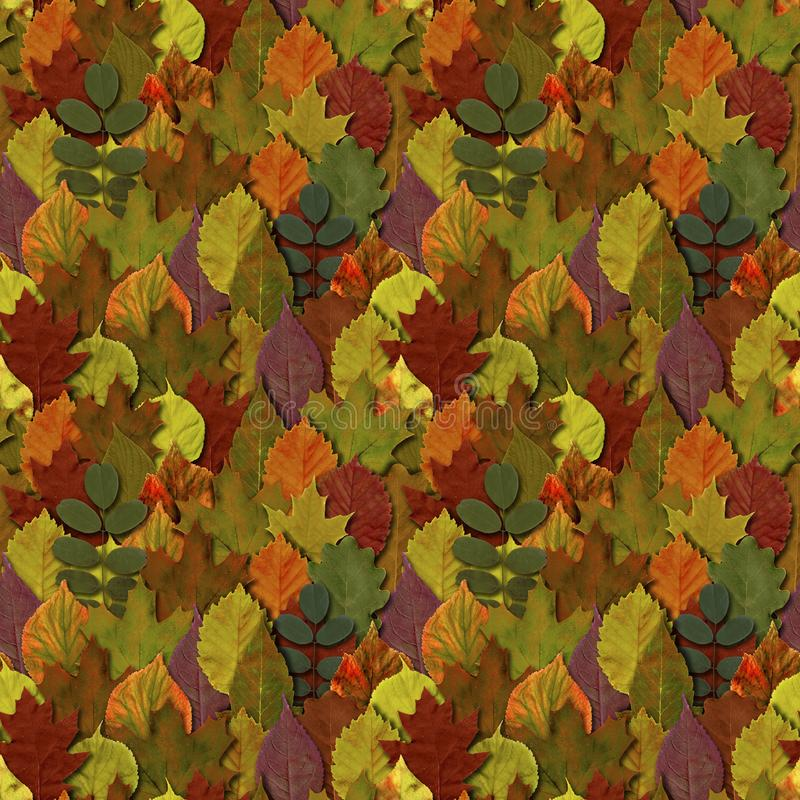Fall leaves seamless pattern background. Autumn leaf colorful foliage. Beautiful bright yellow orange green red nature endless texture stock illustration