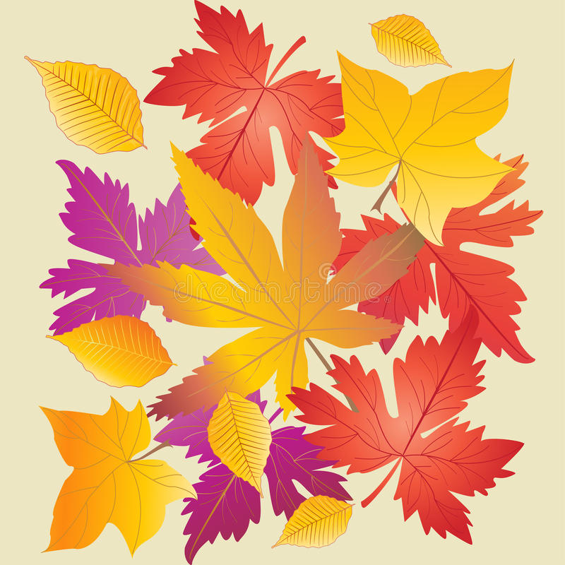 Fall leaves. Fall season leaf background. Autumn Maple leaf. Autumn leaves. Fall leafs pattern. Autumn abstract background. Vector Illustration. Thanksgiving royalty free illustration