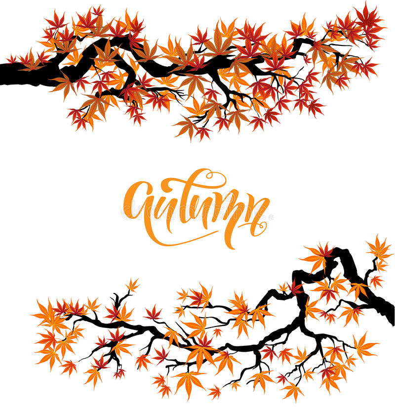 Free Fall Leaves Set Royalty Free Stock Images - 95841549