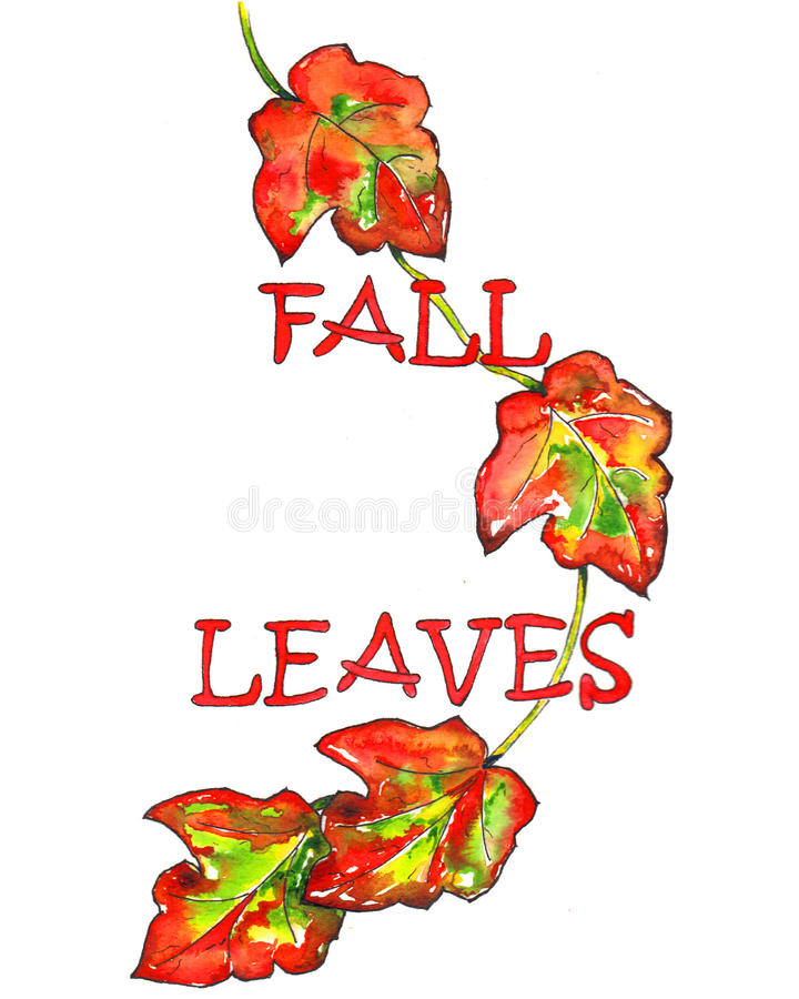 Fall leaves. Vibrant fall leaves watercolor painting vector illustration