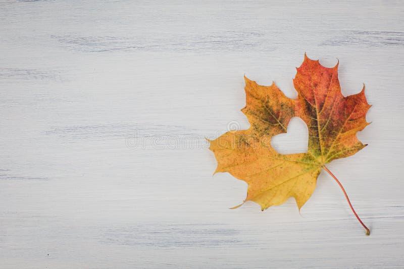 Fall in love photo metaphor. stock photo