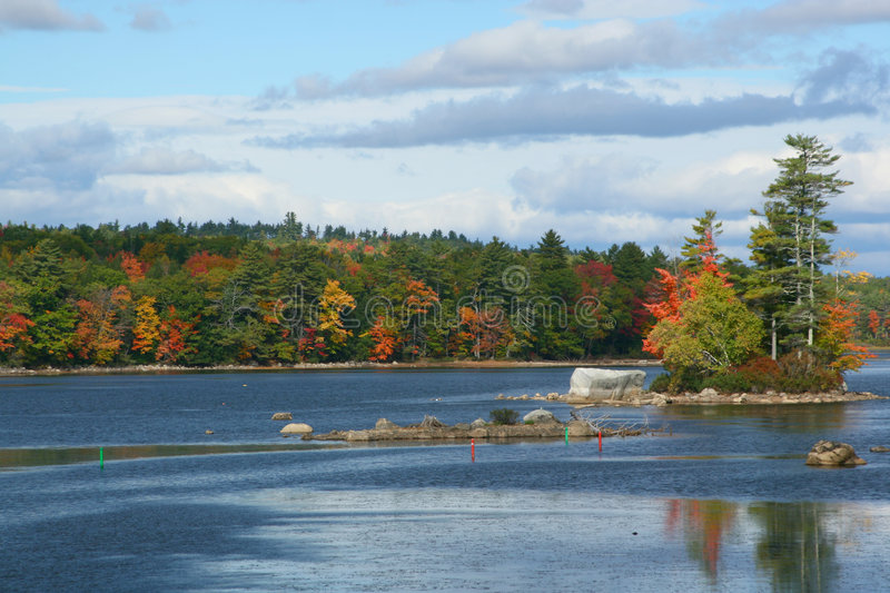 Fall in Maine royalty free stock photo