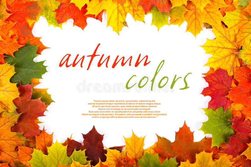 Fall maple leaf border. With place for your text inside stock images