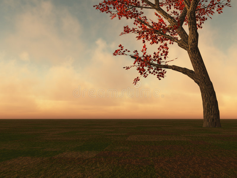 Download Fall Maple Tree On Horizon Stock Images - Image: 3470354