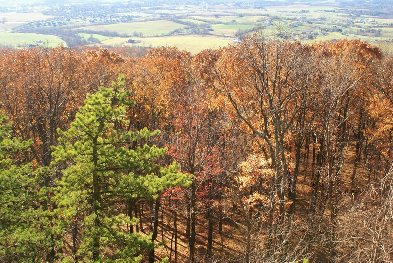 Fall in Maryland royalty free stock photography