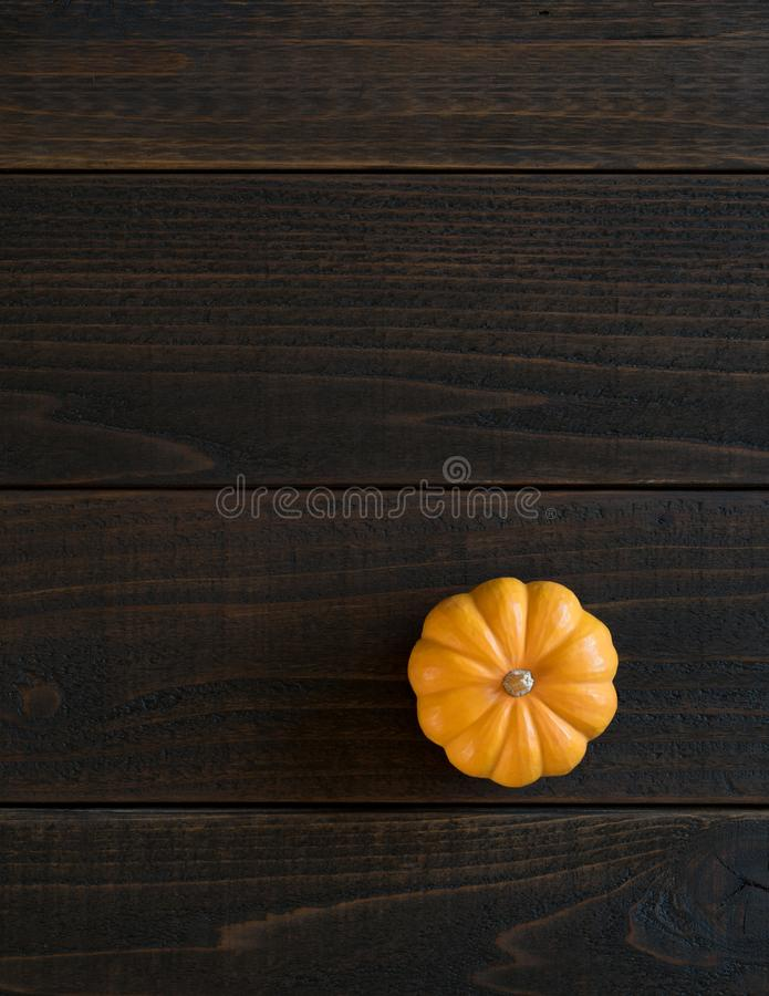 Fall Mini Pumpkin in Minimalist Still Life Card on Moody, Dark Shiplap Wood Boards with Extra Room or space for copy, text or your royalty free stock photos