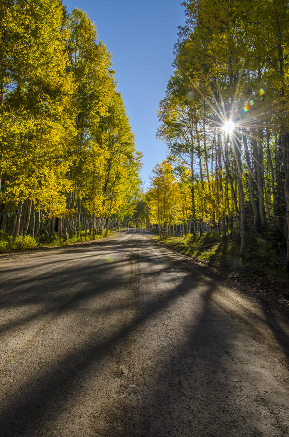 Download Fall Morning Drive In The Aspens Stock Photo - Image: 26798984