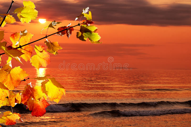 Fall Morning At The Ocean Stock Images