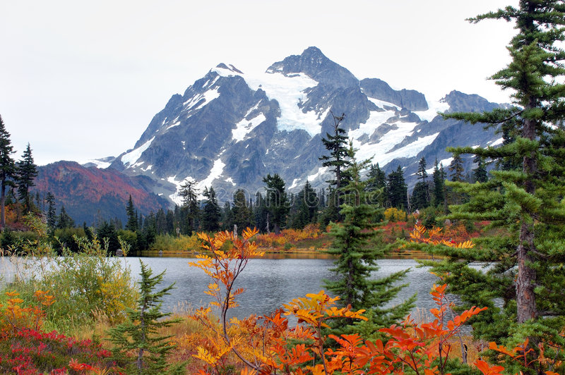 Download Fall at Mount Baker stock image. Image of green, scene - 1372039