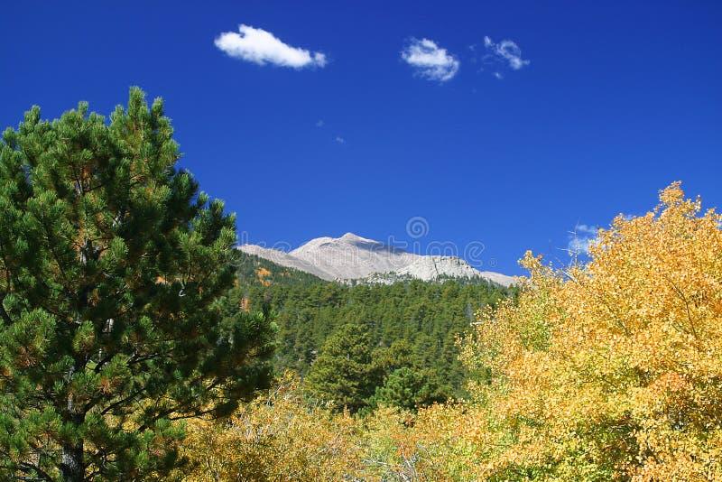 Fall at Mount Meeker royalty free stock photos