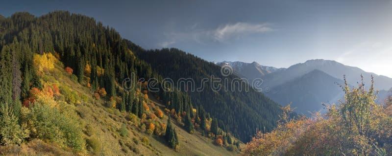 Fall in mountain stock photo