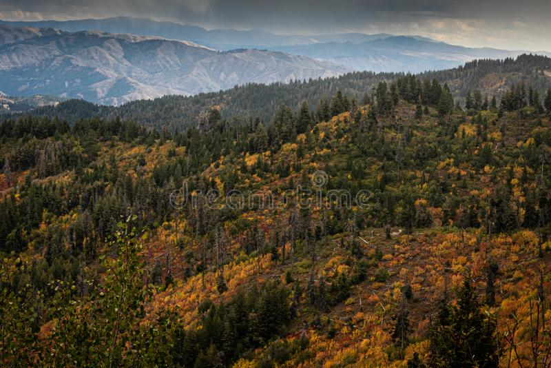 Fall mountain landscape from above. Beautiful colors: yellow, orange, red, and green stock image