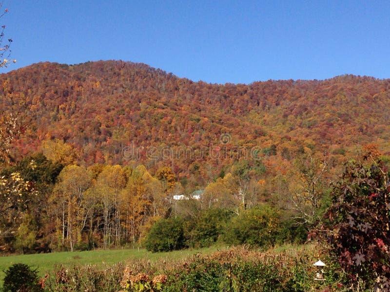 Fall mountain madness stock image