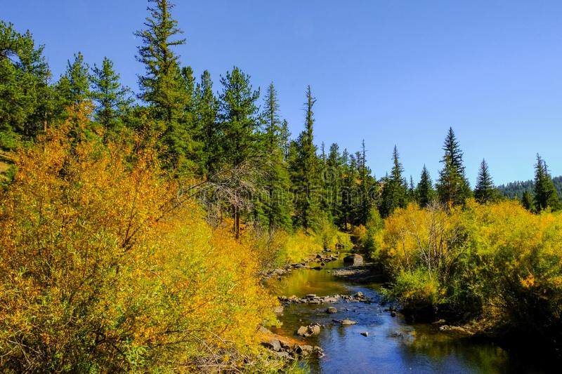 Fall in the Mountains royalty free stock images