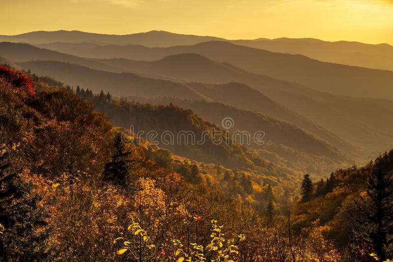Fall in Nationalpark Great Smoky Mountains stockbild
