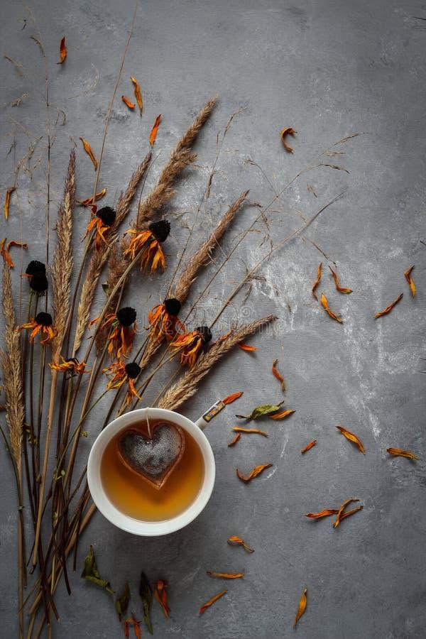 Fall nature flatlay Composizione d'autunno con fiori secchi e tazza di tè fotografia stock