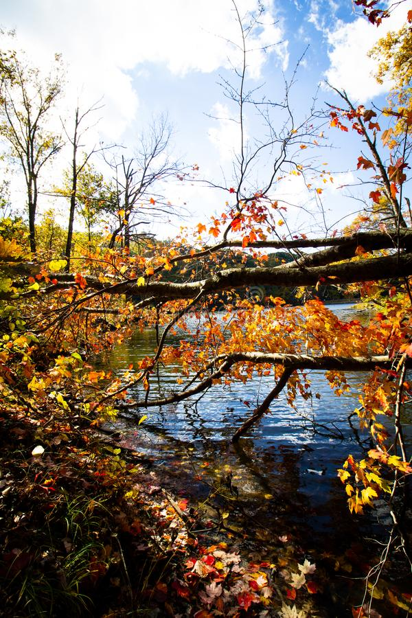 Fall on Ogle Lake, Brown County State Park, Indiana royalty free stock image